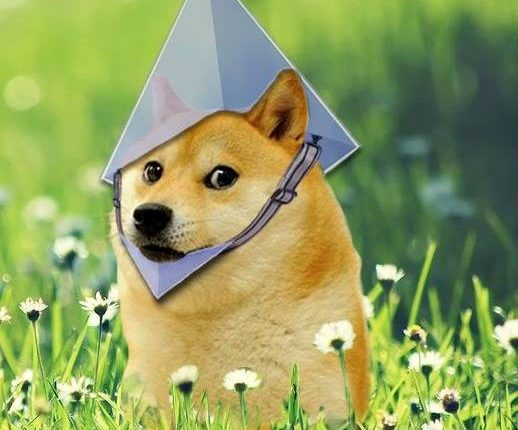 Doge with Ethereum Hat